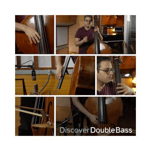 double bass online course