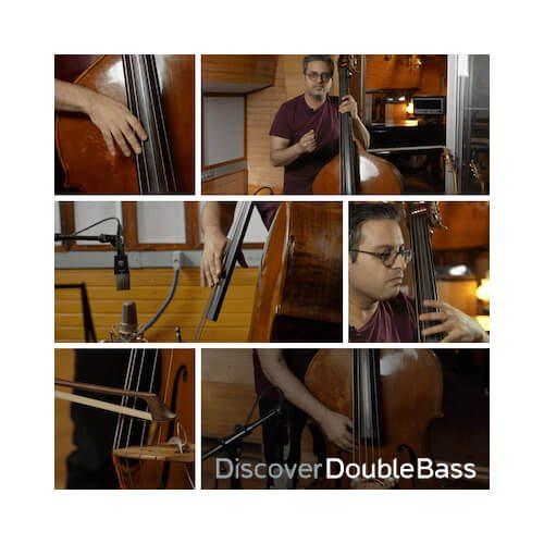 double bass online course